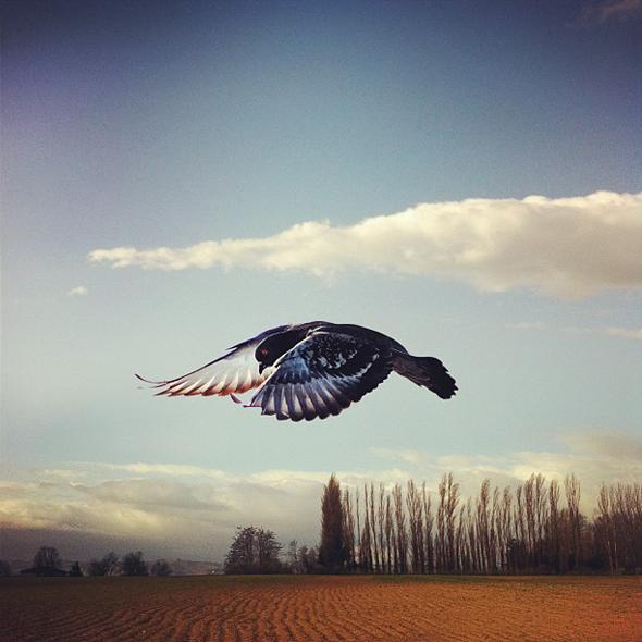 Вдохновение итальянского фотографа Симона Браманте