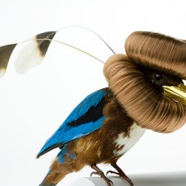 Taxidermy Sculptures