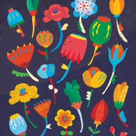 Le illustrazioni di Tai Pera