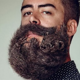 Animals as Beards – Free Your Skin