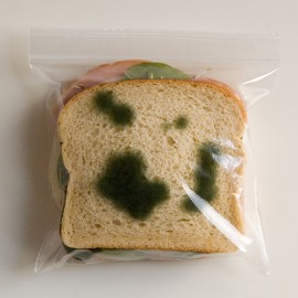 The Anti-Theft Lunch Bag