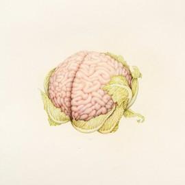 "I frutti ""anatomici"" di Aurel Schmidt (NSFW)"