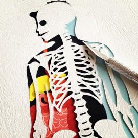"""""""Anatomia"""" e altre meraviglie di carta di Hélène Druvert"""