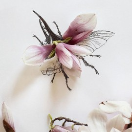 Magnolias and Bugs