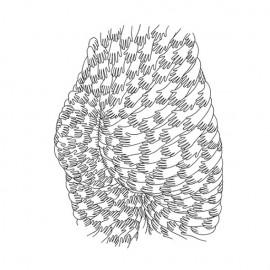Se 1000 disegni non bastano: Mrzyk & Moriceau