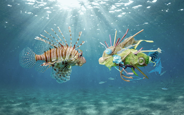 oceans plastic picame ocean care lionfish