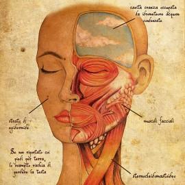 È uscito il primo Trattato di Anatomia Emozionale della storia