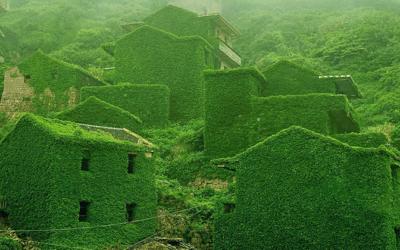 In Cina un Villaggio abbandonato è stato riconquistato dalla Natura in maniera spettacolare