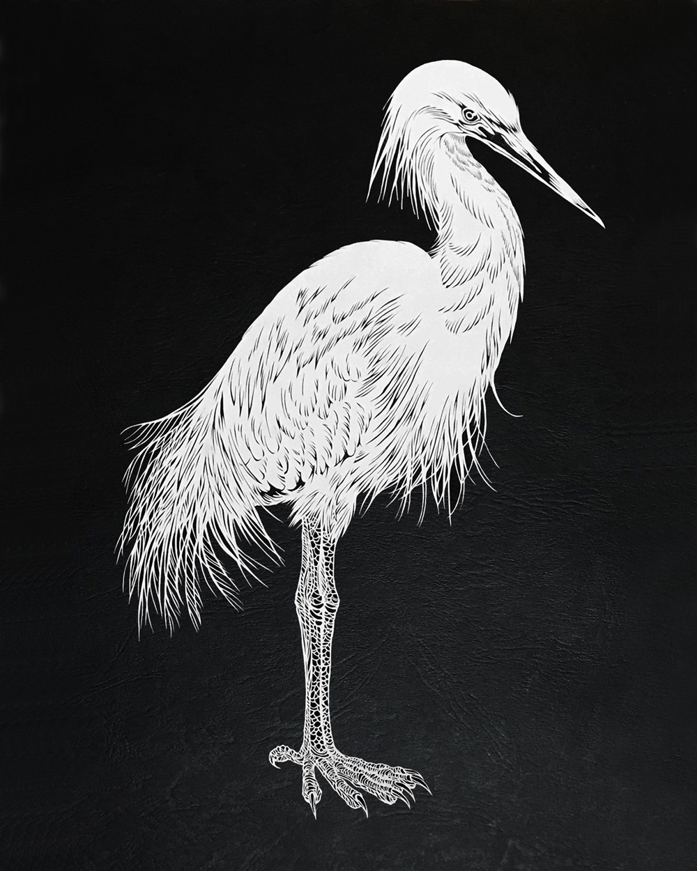 masayo fukuda picame heron
