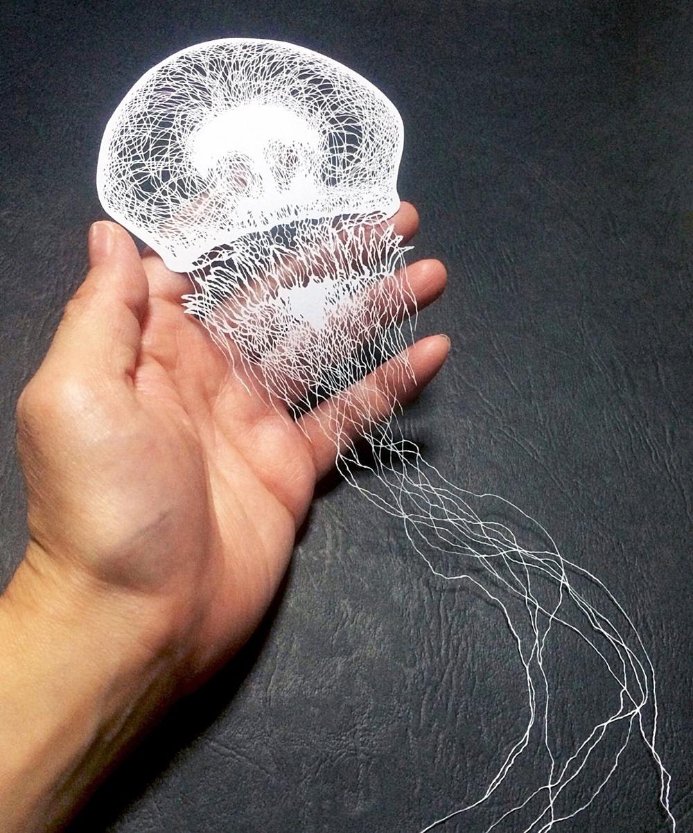 masayo fukuda picame jellyfish