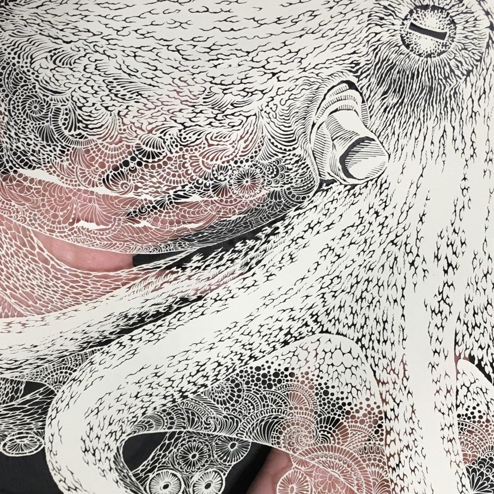 masayo fukuda picame octopus