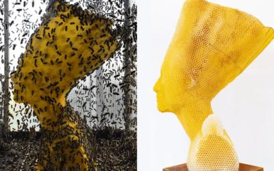 Queste sculture sono il frutto del lavoro di 60.000 api