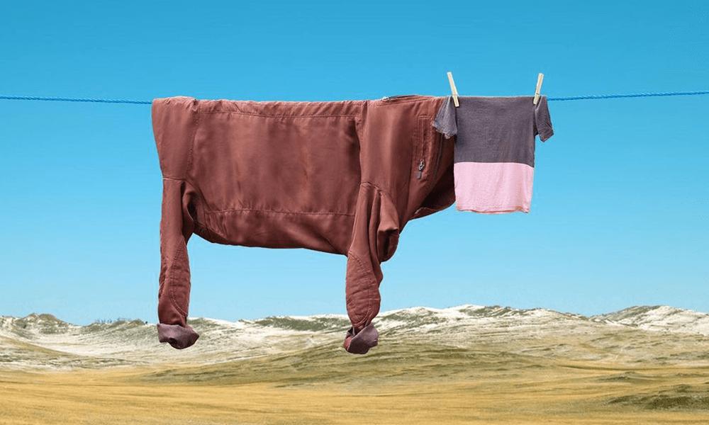 """Il surrealismo domestico di Helga Stentzel tra mucche """"stese"""" e avocado canterini"""