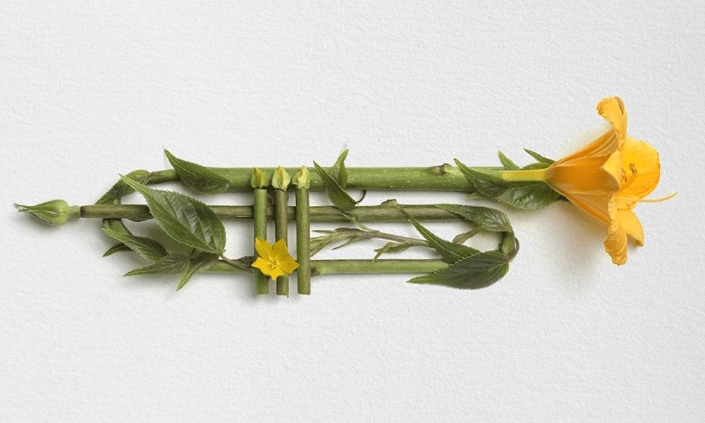 Raku Inoue realizza splendide composizioni naturali fatte con fiori, foglie e cortecce