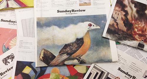 Illustrazione 2.0 e self-promotion secondo Alexandra Zsigmond, AD del New York Times – Intervista