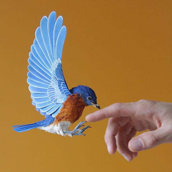 Gli incredibili uccelli di carta di Diana Beltran Herrera