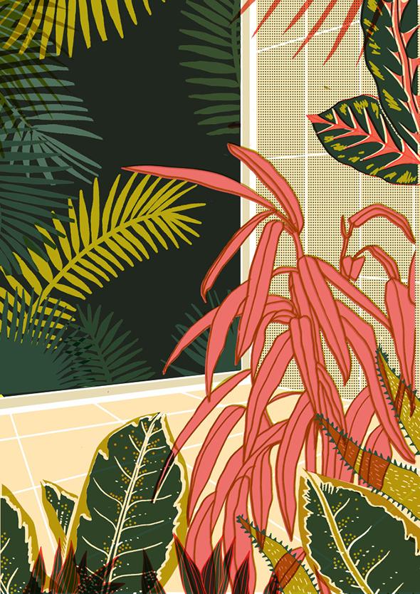 Le illustrazioni di Elena Boils