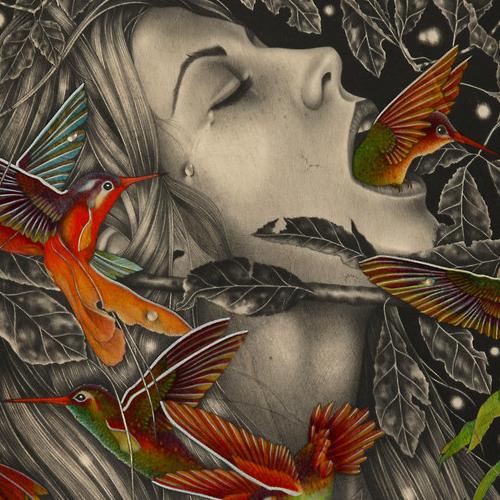 Le illustrazioni di Alessia Iannetti