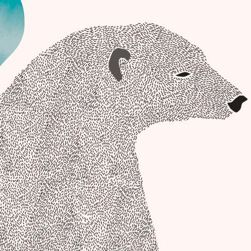 Le illustrazioni di Catherine Cordasco