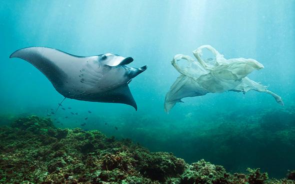 oceani plastica picame ocean care manta