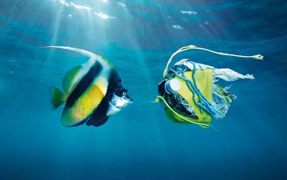 oceani plastica picame ocean care pesce giallo