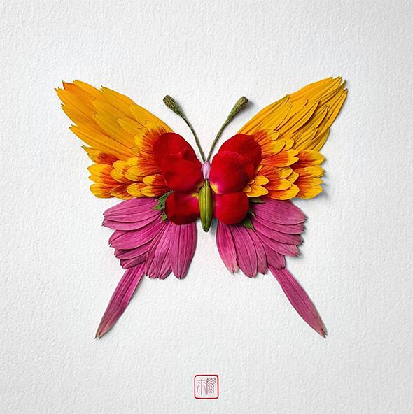 Gli insetti più belli del mondo nei collage di Raku Inoue