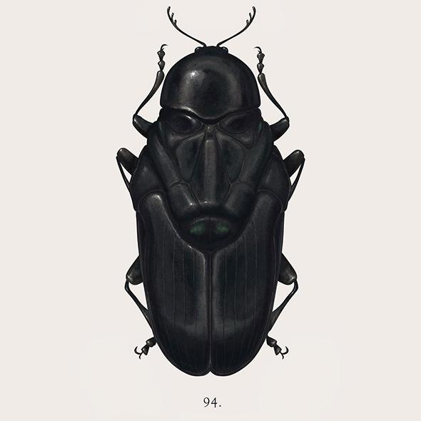 I personaggi di Star Wars nascosti negli insetti di Richard Wilkinson